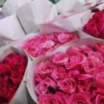 Bisnis Merangkai Bunga di hari Valentine