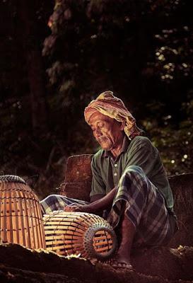 10 Usaha Di Kampung Yang Menjanjikan Keuntungan Besar ...